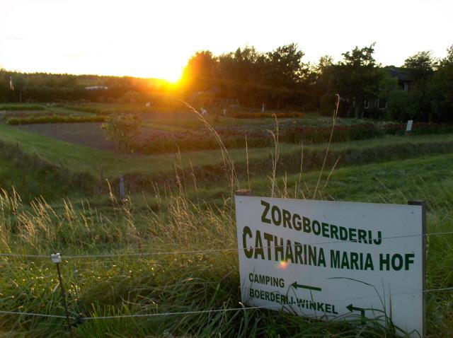 Catharina-Maria Hof